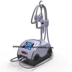 চীন Home Coolsculpting Cryolipolysis Machine সরবরাহকারী